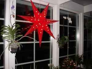 Julstjärnan på plats