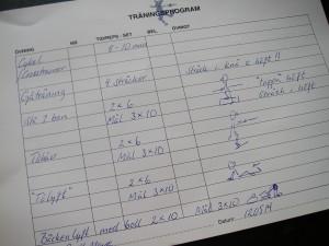 Träningsschema á la Viktoria