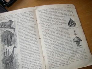 Geografi för Folkskolan av Almquist skriven år 1905