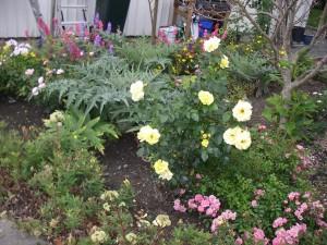 Den vackra trädgården ger kraft