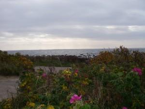 Havet utanför Vejbystrand