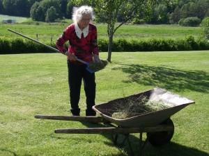 Mamma krattar i trädgården