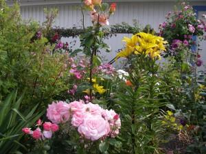 Vår blomsterträdgård