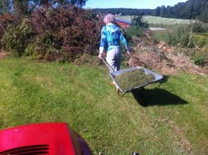 Sommarbild: mamma på väg bort med gräset