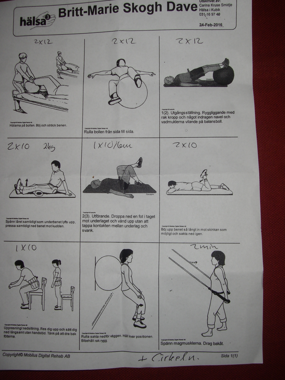 Träningsprogrammet från Hälsa i Kubik