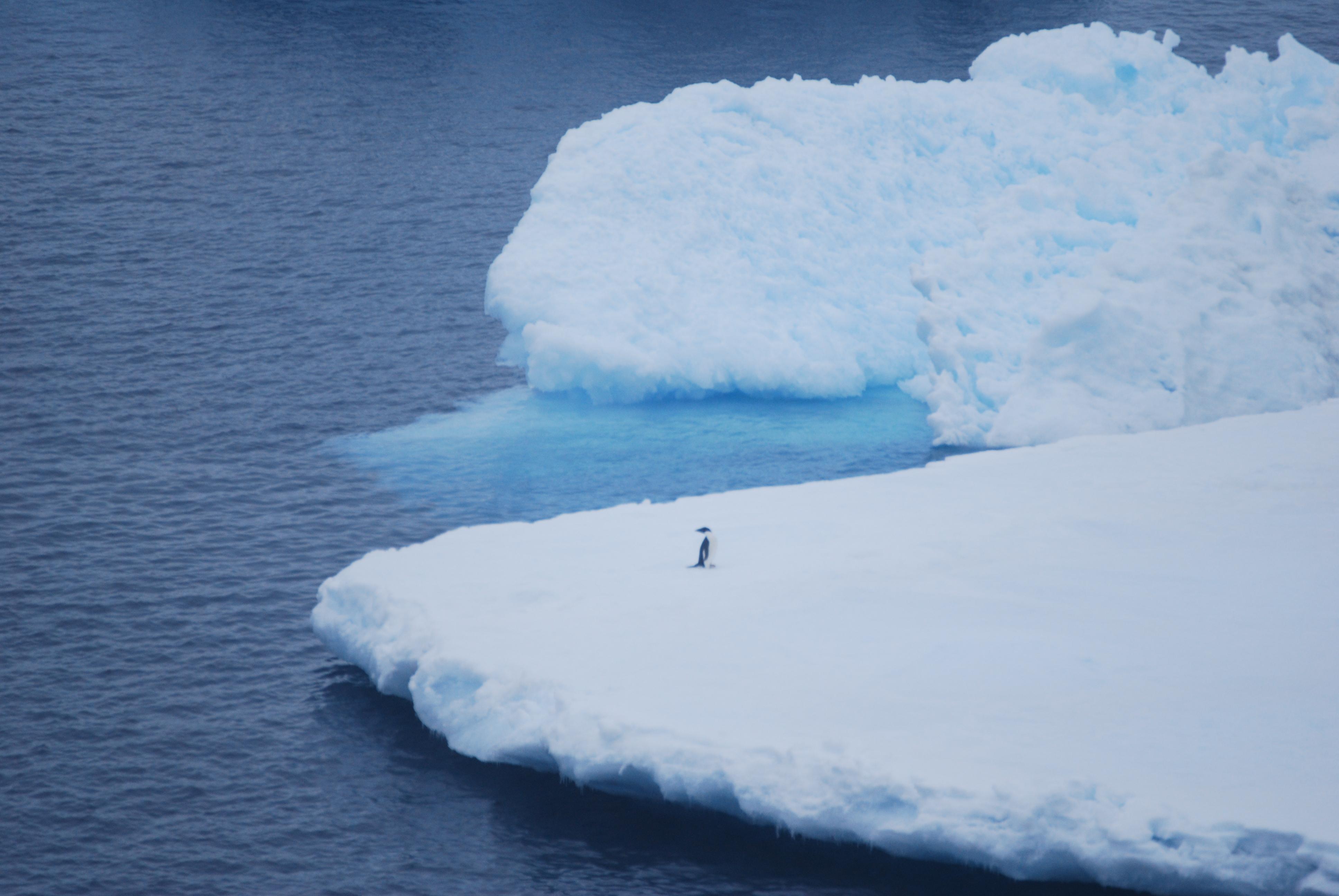 Antarktis årsskiftet 2010-2011
