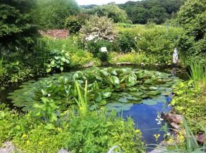 Med lite extra krafter och stor envishet, så kan vi kanske få det lika fint som runt den här dammen en dag.